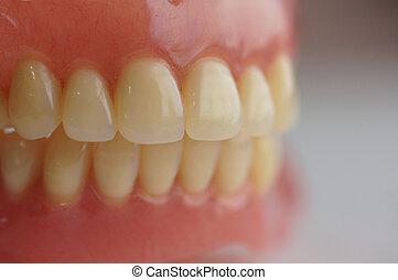 dentadura, lleno
