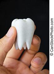 dentaire, concept