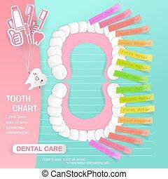 dentaire, dent, diagramme, soin