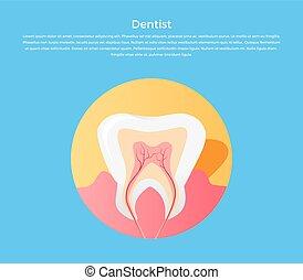dentaire, icône, soin, dent