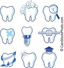dentaire, vecteur, conceptions, icônes
