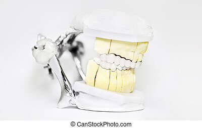 Dental articulator  on white background, dentist technical tools