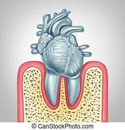 Dental Care Heart Disease