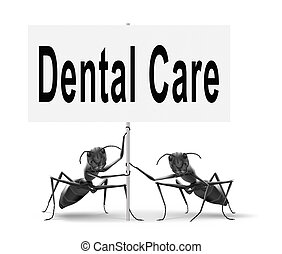 dental care