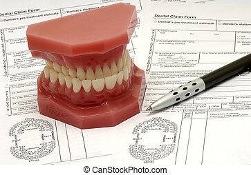 Dental Claim Forms and Model of Teeth
