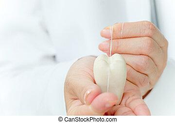 dental floss - dentist holding molarwith dental floss,...