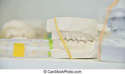 Dental gypsum model cast of human dental jaw. Laboratory...