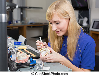 Dental lab technician applying porcelain to dentition mold...