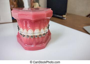 dental, modell, hosenträger