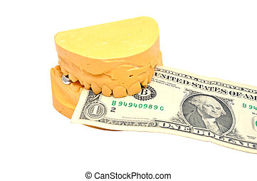 dental mould and dollar