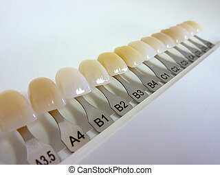 Dental shade guide with many colors for dental technician...