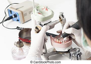 dental, técnico, trabajando, con, articulator