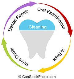 dentale, grafico