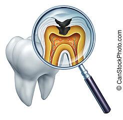 dente, cavidade, cima