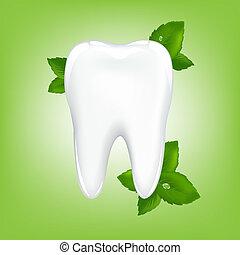dente, com, hortelã