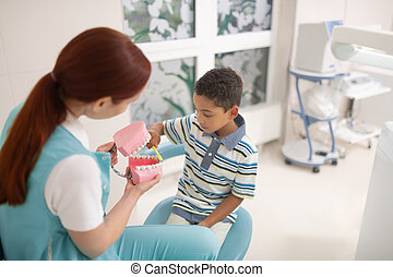 Dentist holding teeth model while boy using tooth brush
