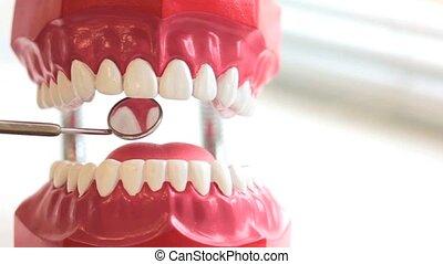Dentist inspects teeth