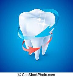 Dentist Symbol - Isometric Illustration Herbal and Fluoride...