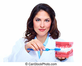 Dentist woman. - Dentist woman with the teeth model. Dental...