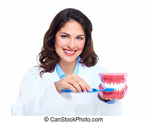 Dentist woman with the teeth model. Dental health care clinic.