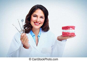 Dentist woman. - Dentist woman with the teeth model. Dental...