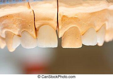 dentista, trabajo, 's
