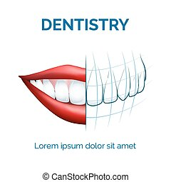 Dentistry - Illustration of human mouth, lips and teeth and...