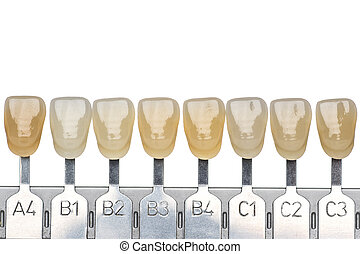 Denture and implant production: false teeth color samples