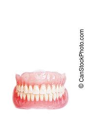 Denture isolated on white background