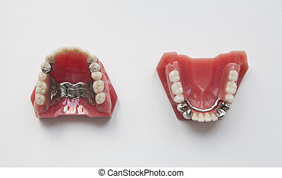 dentures - two artificial dentures against white background