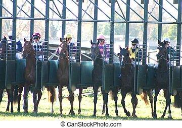 horses racing - departure of the horses racing