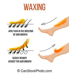 depilação, claro, liso, cabelo, skin., waxing., epilation, hair., removal.