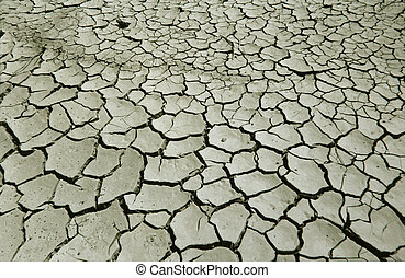 Cracked earth in Sossusvlei, Namibia.