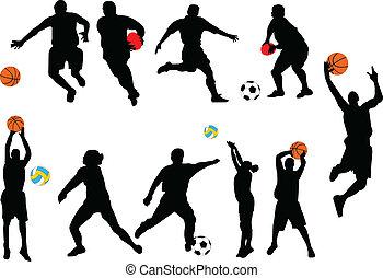 deporte, colección, -, vector