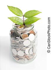 Deposit your budget