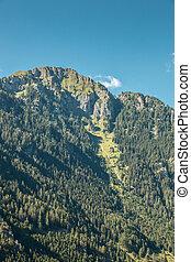 der, berge, grün, felder, wiesen, und, wälder