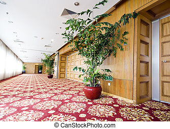 der, luxushotel, korridor