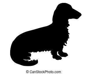 der, schwarz, silhouette, von, a, longhaired, dachs, hund