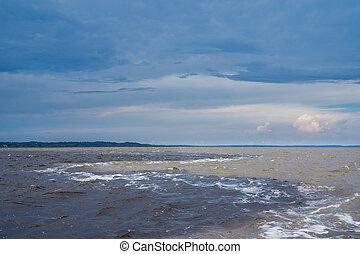 der, versammlung, von, wasser, (portuguese:, encontro, das, aguas), amazonas fluß