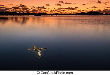 deriva, legno, croce, lago