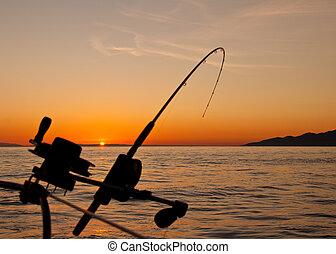 derned, rigning, fiske stang, hos, solnedgang