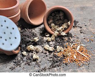 derramado, sementes, jarro