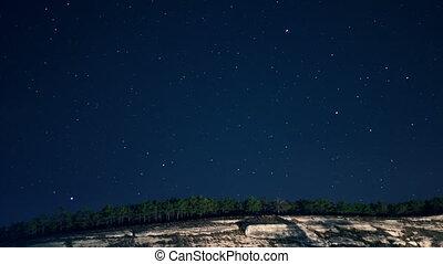 derrière, forêt, étoiles