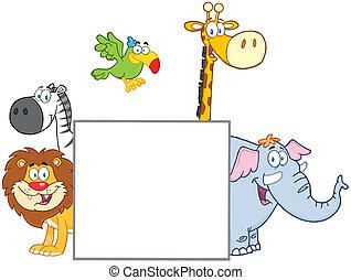 derrière, vide, animaux, jungle, signe