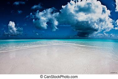 derst, 浜。