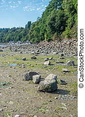 Des Moines Low Tide - A rocky seabed is revealed during low ...