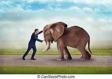 desafío, obstáculo, empresa / negocio, elefante