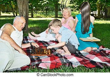 descansar, nietos, abuelos, tablero de ajedrez, foco, park., horizontal.
