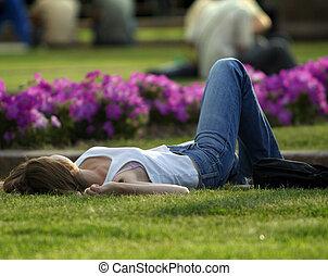 descanso, ligado, um, gramado