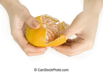 descascado, tangerina, em, a, mãos